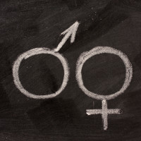 male and female gender symbols  on blackboard